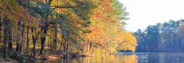 A lake in Raleigh, NC, with fall leaves featured in a blog post about fall activities